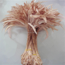 Wholesale Stripped Coque rooster tail feather for decoration