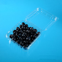 manufacture cheap plastic fruit packaging for 125g