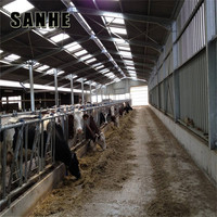 construction large modern light steel cowshed with install service
