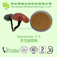 Free samples lucid ganoderma extract powder, high quality ganoderma lucidum extract, 10% polysaccharides lucid ganoderma powder