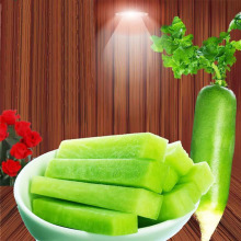 Good Quality Delicious Sweet Fresh Green Radish