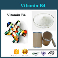 High Quality Poultry feed Vitamin B4 ( choline chloride