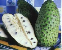 Graviola Fruit - Tropical Fruits Brazil