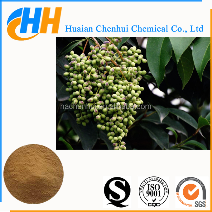 Natural Glossy Privet fruit Extract, Glossy Privet powder, Glossy Privet P.E.