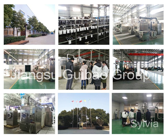 GHJ-300 Pharmaceutical Powder or Granular Mixer Machine