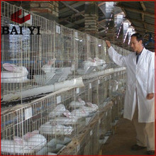 BAIY IRabbit Cage Industrial For Sale Farming Commercial Rabbit Cage