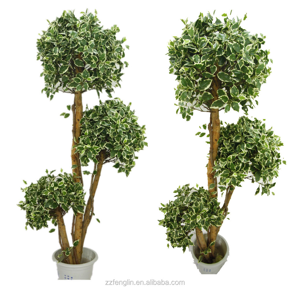 High quality ball topiary silk artificial ficus tree for indoor home office hotel decoration