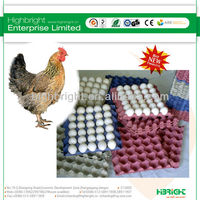 12 holes plastic disposable chicken egg tray