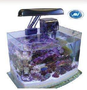 Fish bowl jbj 3 gallon picotope aquarium buy aquarium for 3 gallon fish bowl