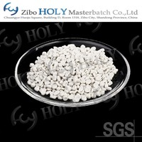 CaCO3 powder plastic filler masterbatch for film blowing
