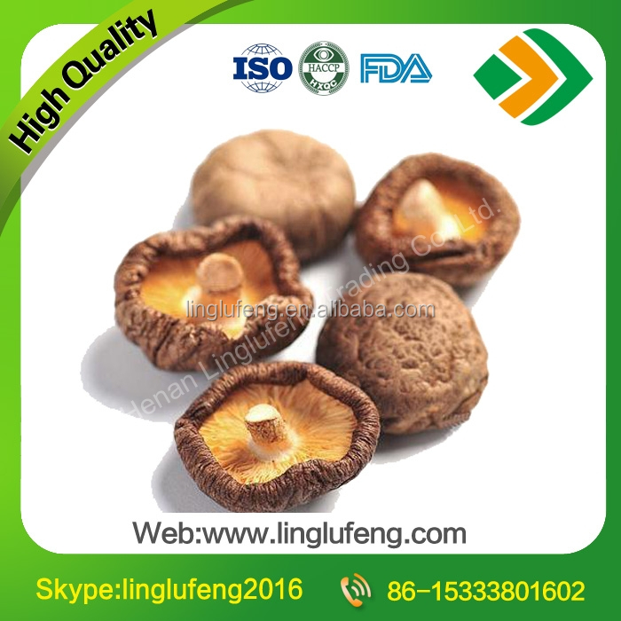 All Types of Dried Shiitake Mushrooms price