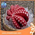Flower shape delicious frozen octopus for sale