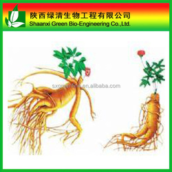 ginseng extract panaxoside 80%, rg1,rb1