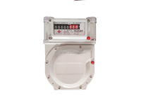 HOUSEHOLD ORDINAL TYPE GAS METER WITH ALUMINUM CASE