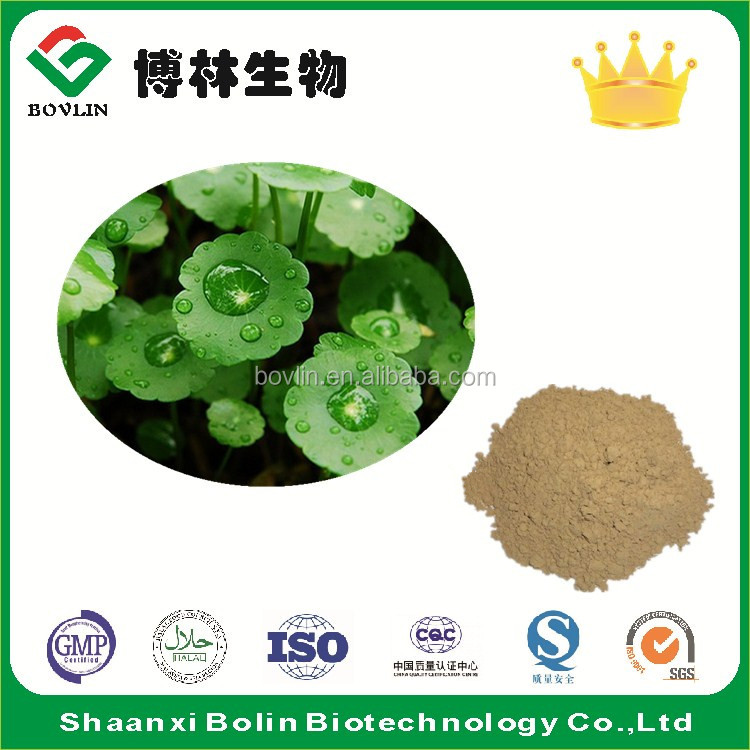 Free Sample Centella Asiatica Extract / Centella Asiatica Powder / Centella Asiatica P.E.