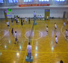 1.5mm thickness wear layer PVC sports flooring for Volleyball playground