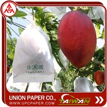 UPC Mango protection bag fruit growing paper For Paper