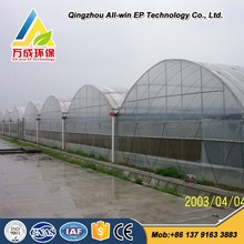 PE Film Covered Greenhouse With Hydroponic System For Aquaponics