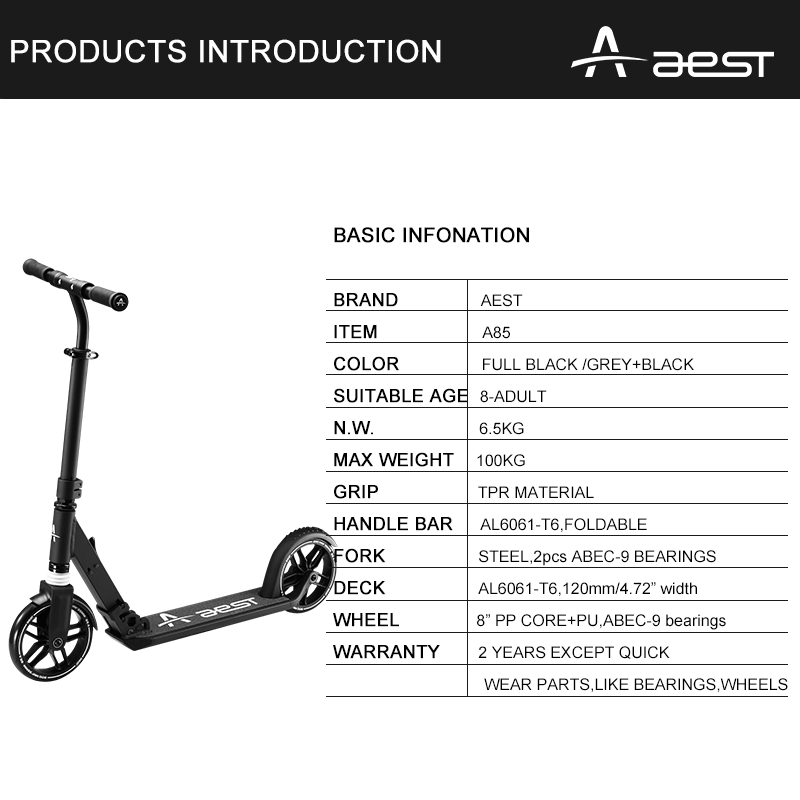 AEST A85 high quality adult scooter
