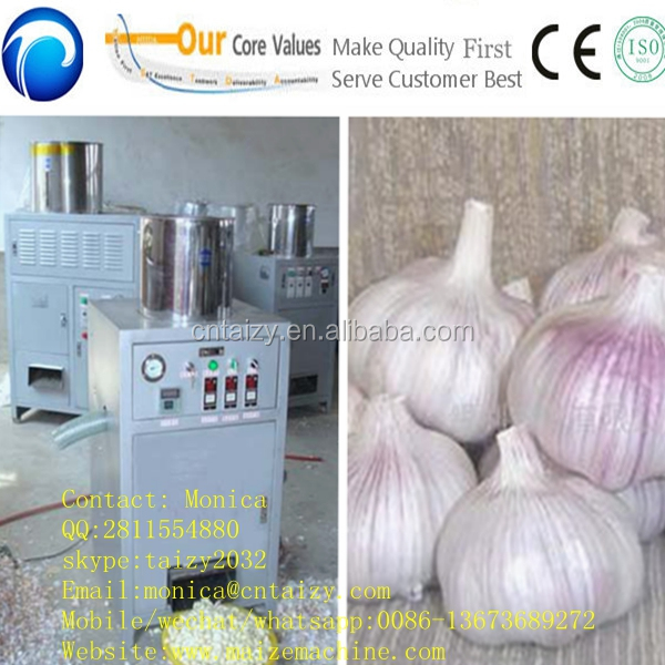 dry way multifunctional ginger and garlic peeling machine