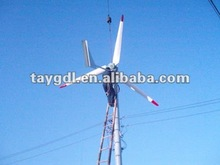 Large Power Hoirzontal Axis Wind Permanent Magnet Generator