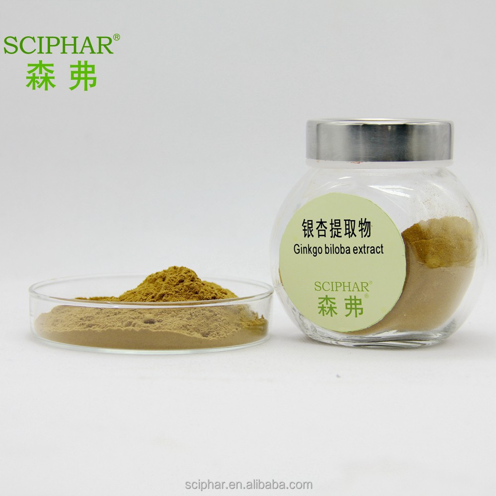 High Quality Ginkgo Biloba Extract Powder 24.0% Flavones 6.0% lactones