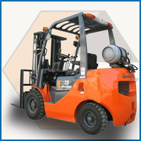 made in china 2 ton LPG Gasoline forklift truck for sale with LPG Fixture