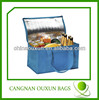 6 can disposable insulated lunch cooler bag for frozen food