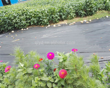 HOT Sale UV Resistance Plastic Weed Cover Mat and Mulch Film
