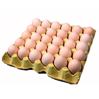 User Defined Size Wholesale Paper Egg