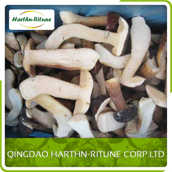 New crop A Grade frozen Boletus Edulis whole/cubes