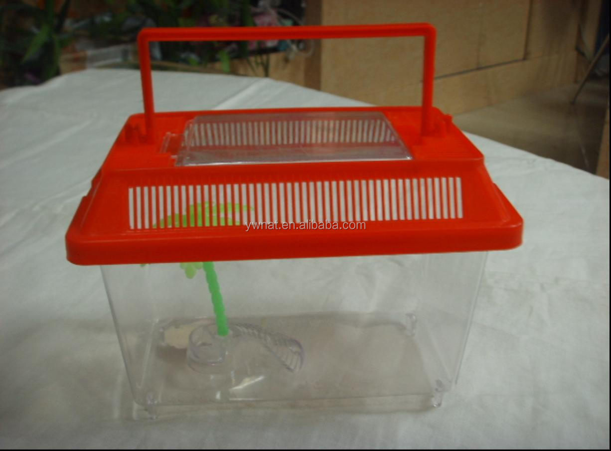 Plastic Insect Box Collecting Insect, Carrying for Children
