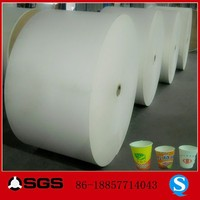 pe coated paper cup raw material,reel paper for cup