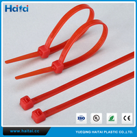 Haitai Factory OEM Customized Free Sample Any Color Nylon Zip Tie Silicone Cable Tie