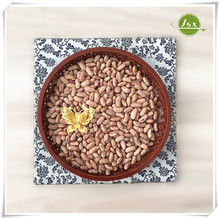 JSX wholesale types of Huanan round kidney beans, Huanan round light speckled kidney beans for sale