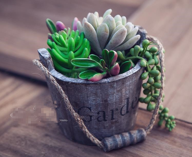 Succulents wooden decorative flower pot