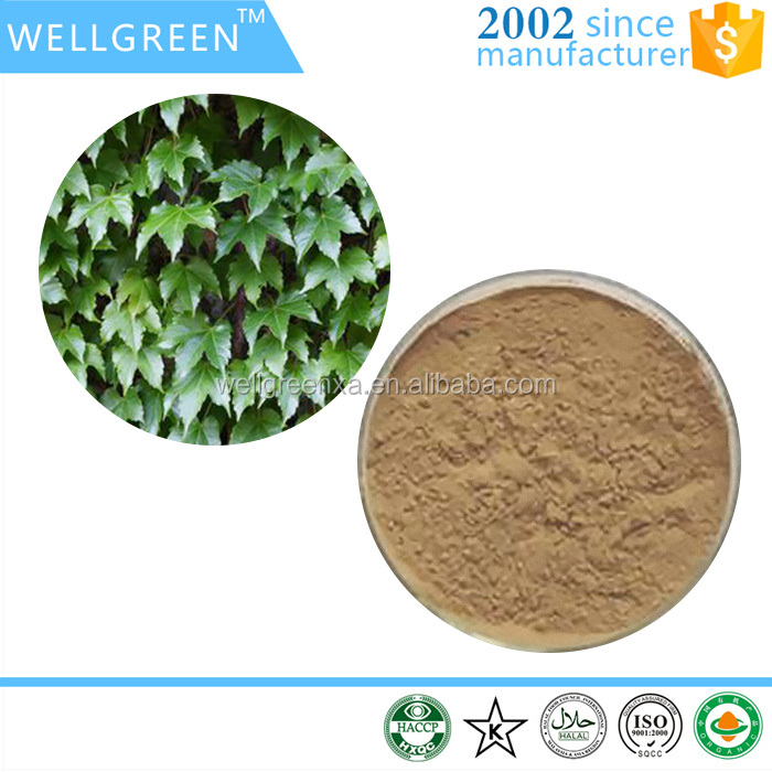 Factory supply natural plant extract cosmetic additive Ivy leaf Extract