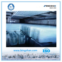 Block Ice Making Plant/Ice Making Machine