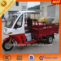 Motor Non Electric Cargo Pedal Trike Tricycle