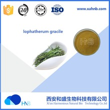 2017 HNB Supply lophatherum gracile Extract / Common Lophatherum Herb P.E.
