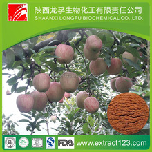 the world opitimized apple extract powder &natural green apple extract