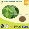 Food Grade 100% Natural Mulberry Leaf Extract