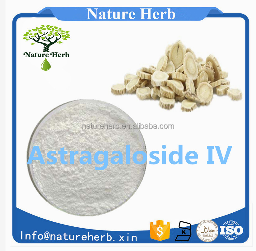 100% Pure And Nature Astragalus Root Extract,Astragaloside Iv 98%