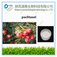 100% Natural Yew Bark Extract Paclitaxel powder