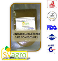 Ginkgo biloba P.E. herbal extract