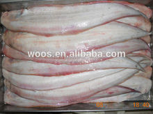 Frozen Tongue Sole for Sale from Bangladesh
