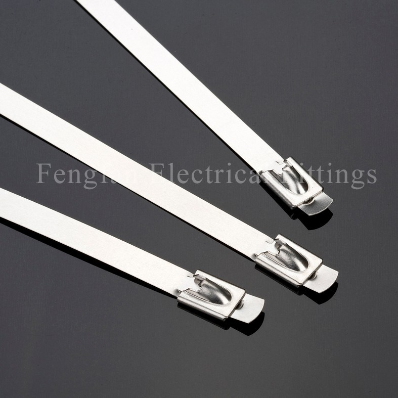 Stainless Steel Cable Ties- Ball-Lock with Tongue Head Uncoated Ties
