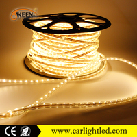 KEEN 220V single row 4.8 watt per meter underwater multicolor led strip 3528 warm white flexible smd ip68 cuttable strips light