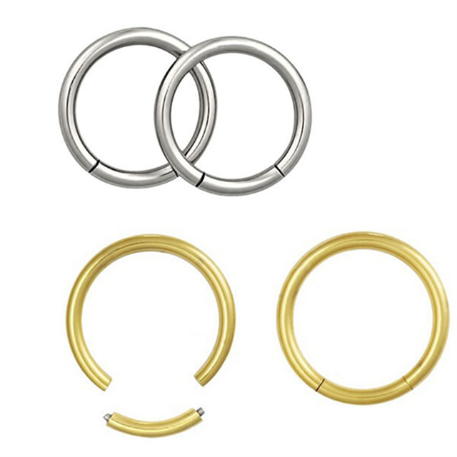Wholesale G23 titanium Hot sale nose piercing segmen ring