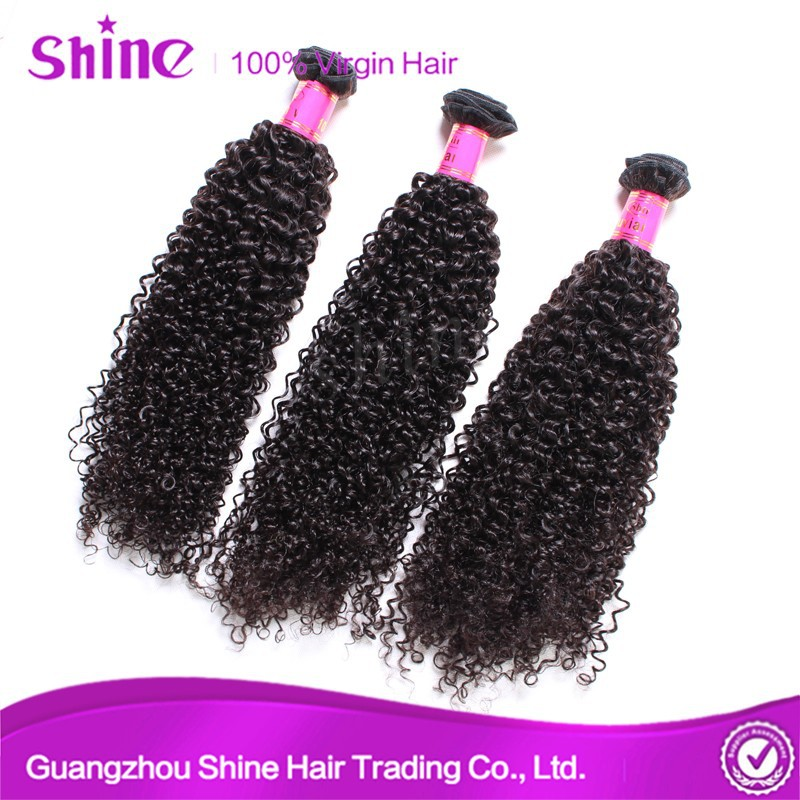 Top quality unprocessed wholesale virgin brazilian human hair afro kinky curly